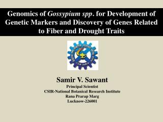 Samir  V . Sawant Principal Scientist CSIR-National Botanical Research Institute Rana Prarap Marg Lucknow-226001