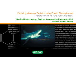 Exploring Molecular Evolution using Protein Electrophoresis Is there something fishy about evolution?
