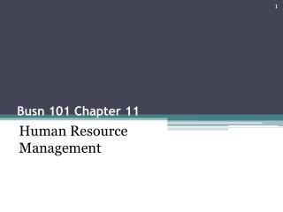 Busn 101 Chapter 11
