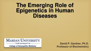 The Emerging Role of Epigenetics in Human Diseases