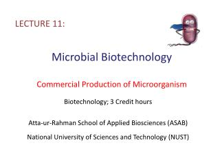 Microbial Biotechnology Commercial Production of Microorganism