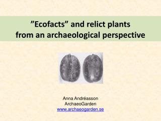 """Ecofacts"" and relict plants from an archaeological perspective"