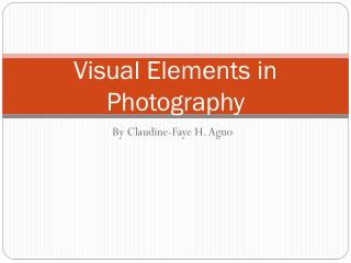 Visual Elements in Photography