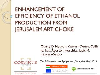 ENHANCE MENT OF EFFICIENCY OF ETHANOL PRODUCTION  FROM JERUSALEM ARTICHOKE