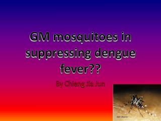 GM mosquitoes in suppressing dengue fever??
