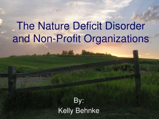 The Nature Deficit Disorder and Non-Profit Organizations