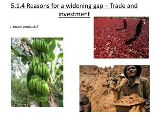 5.1.4 Reasons for a widening gap – Trade and investment