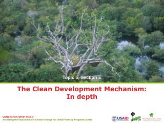 The Clean Development Mechanism:  In depth