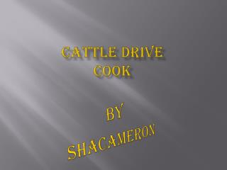 Cattle drive  cook