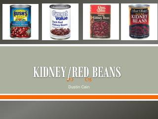 KIDNEY/RED BEANS