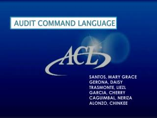 AUDIT COMMAND LANGUAGE