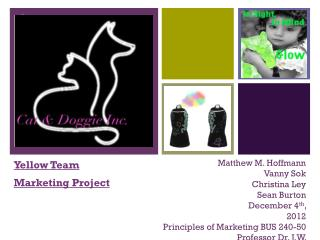 Yellow  Team Marketing Project