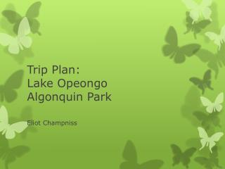 Trip Plan: Lake Opeongo Algonquin Park