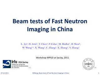 Beam tests of Fast Neutron Imaging in China