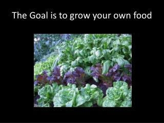 The Goal is to grow your own food