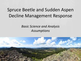 Spruce Beetle and Sudden Aspen Decline Management Response