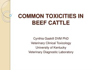 COMMON TOXICITIES IN BEEF CATTLE