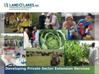 Developing Private Sector Extension Services