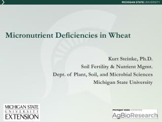 Micronutrient Deficiencies in Wheat