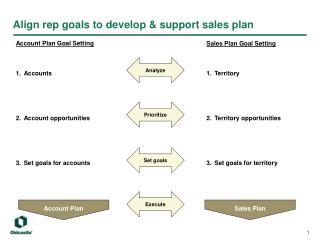 Align rep goals to develop & support sales plan
