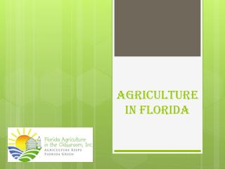 Agriculture In Florida