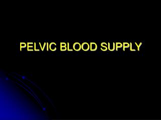 PELVIC BLOOD SUPPLY
