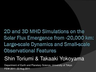 2D and 3D MHD Simulations on the Solar Flux Emergence from -20,000 km: Large-scale Dynamics and Small-scale Observation