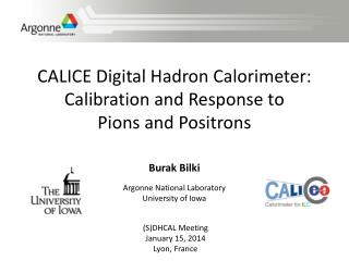 CALICE Digital Hadron Calorimeter: Calibration and Response to  Pions  and Positrons