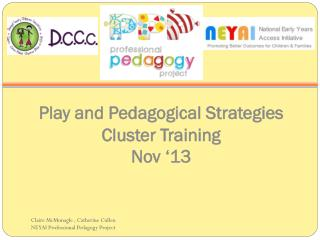 Play and Pedagogical Strategies Cluster Training Nov '13