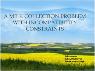 A Milk Collection Problem with Incompatibility Constraints