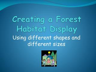 Creating a Forest Habitat Display