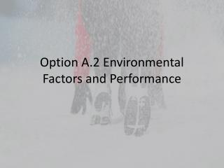 Option A.2 Environmental Factors and Performance