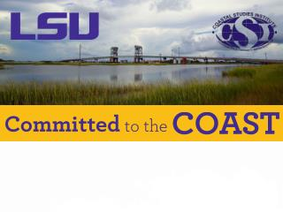 Overview : Increased LSU investments in coastal science and engineering: expanded Coastal Studies Institute