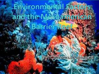 Environmental  Factors and the Mesoamerican Barrier Reef