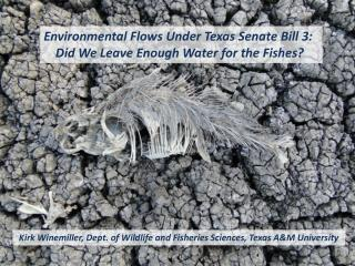 Environmental Flows Under Texas Senate Bill 3:   Did We Leave Enough Water for the Fishes?