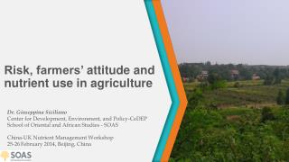 Risk, farmers'  attitude and  nutrient use in agriculture
