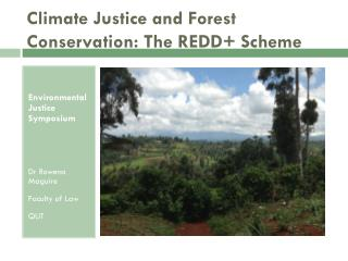 Climate Justice and Forest Conservation: The REDD+ Scheme