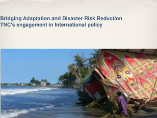 Bridging  Adaptation  and Disaster Risk Reduction  TNC's  engagement in  International  policy