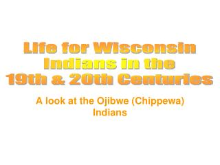A look at the Ojibwe (Chippewa) Indians