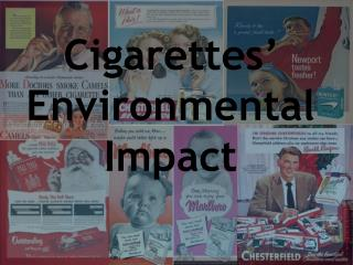 Cigarettes' Environmental Impact
