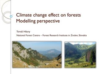 Climate change effect on  forests Modelling perspective