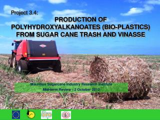 Project 3.4:  PRODUCTION OF POLYHYDROXYALKANOATES (BIO-PLASTICS) FROM  SUGAR CANE TRASH AND  VINASSE