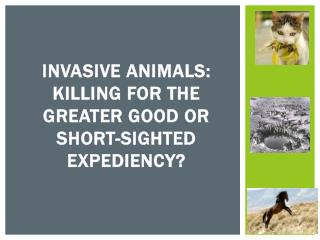 INVASIVE  ANIMALS: KILLING FOR THE GREATER GOOD OR  short-sighted EXPEDIENCY?