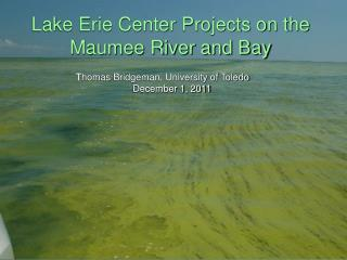 Lake Erie Center  Projects  on the Maumee River and Bay