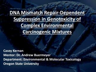 DNA Mismatch Repair-Dependent Suppression  in  Genotoxicity  of Complex Environmental  Carcinogenic  Mixtures