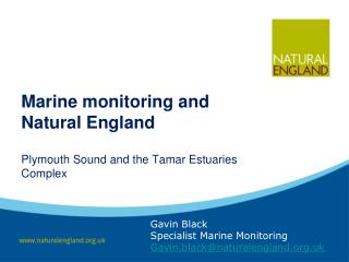 Marine monitoring and Natural England