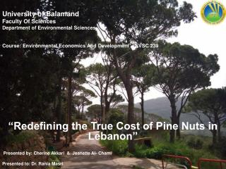 University of  Balamand Faculty Of Sciences Department of Environmental Sciences Course: Environmental Economics And De