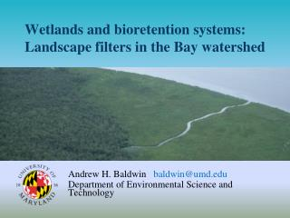 Wetlands and  b ioretention  systems: Landscape filters in the Bay watershed