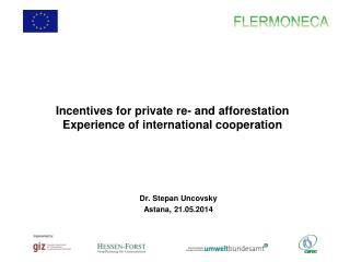 Incentives for private  re- and afforestation  Experience of international cooperation