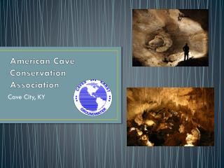 American Cave Conservation Association